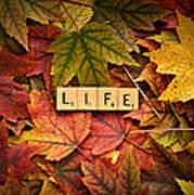 Life-autumn Poster