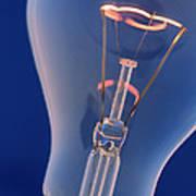 Light Bulb Poster by Chris Knapton