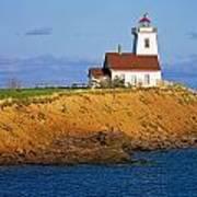 Lighthouse On Prince Edward Island Poster