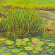 Lilies On The Pond Poster
