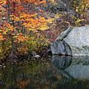 Lincoln Woods Autumn Boulders Poster