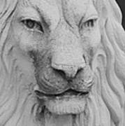 Lion In Stone Poster
