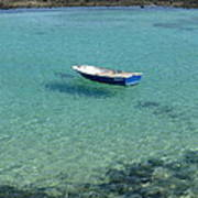 Lobos Laguna Poster