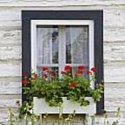 Log Home And Flower Box In The Window Poster