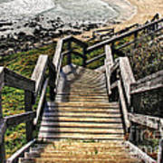 Long Stairway To Beach 2 Poster