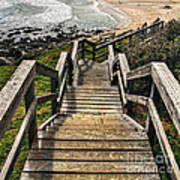 Long Stairway To Beach Poster
