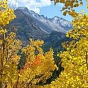 Long's Peak And The Keyboard Of The Winds Amidst Aspen Gold Poster by Margaret Bobb