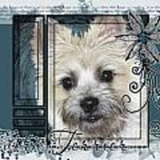 Look In Her Eyes - Cairn Terrier Poster by Renae Laughner