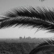 Los Angeles Skyline From Hollywood Hills Poster