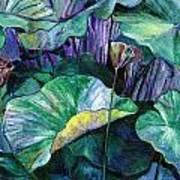 Lotus Pond Poster by Carol Mangano
