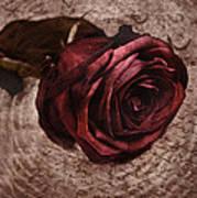 Loveletter Poster
