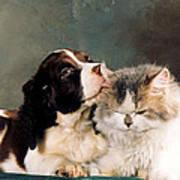 Loving Kiss Poster