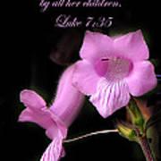 Luke 7 35 Pink Penstemon Flower Poster