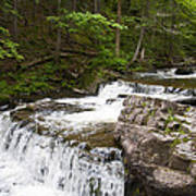 Maggies Falls Lower Through A Green Forest Poster