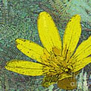 Magic Fern Flower 02 Poster