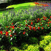 Magic Kingdom Garden Poster