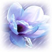 Magnolia Blues Poster