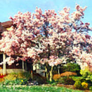 Magnolia Near Green House Poster