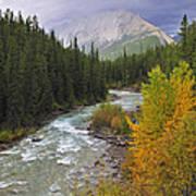 Maligne River Poster