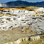 Mammoth Hot Springs Terraces Poster