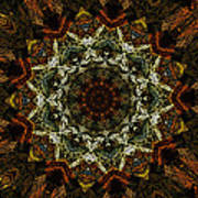 Mandala 111511 Poster