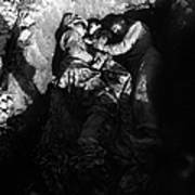 Marines Share A Foxhole With An Orphan Poster