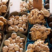 Market Mushrooms Poster