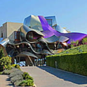 Marques De Riscal Winery Spain Poster
