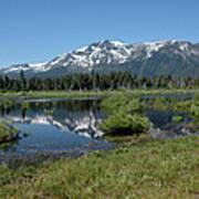 marsh Flowing to Lake Tahoe Poster