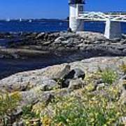Marshall Point Lighthouse Summer Flowers Poster