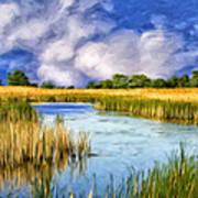 Marshlands On Isle Of Palms Poster