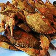 Maryland Steamed Crabs Poster