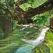 Maya Ubud Tree Bali Indonesia Poster