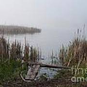 Mclaughlin Bay In The Fog At The Shore Poster