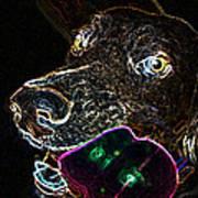 Miko - Glow Poster