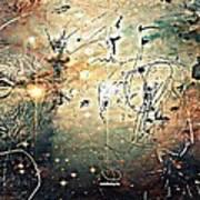 Mikrokosmos Poster by Paulo Zerbato