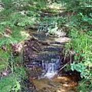 Mini Waterfall At Lower Tahquamenon Falls Park Poster