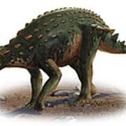 Minmi Paravertebra, A Prehistoric Era Poster