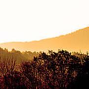 Misty Autumn Sunrise Poster