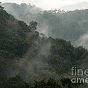 Misty Cloud Forest Matagalpa Nicaragua Poster
