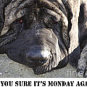 Mondays Poster