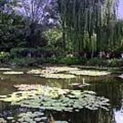 Monet's Water Garden Poster