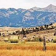 Montana Farm9404 Poster