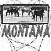 Montana Horse Design Poster