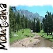 Montana Howdy Poster