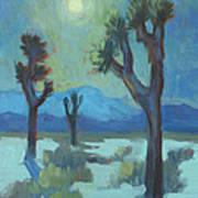 Moon Shadows At Joshua Poster