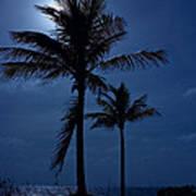 Moonlight Feels Right Poster