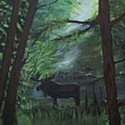 Moose In Pines Poster