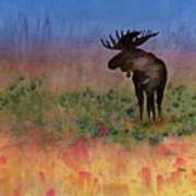 Moose On The Tundra Poster by Carolyn Doe