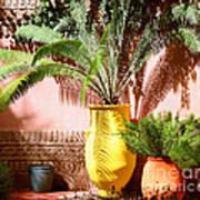 Moroccan Garden Poster